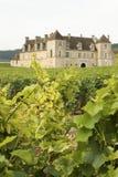 Viñedo, castillo francés Bourgogne Borgoña imagen de archivo