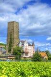 Viñedo cerca de la fortaleza Boosenburg, Ruedelsheim, Hesse, Alemania Fotos de archivo libres de regalías