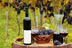 Viñedo con la botella de vino rojo Fotografía de archivo