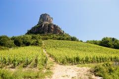 Viñedo de Francia Borgoña con la roca Fotos de archivo