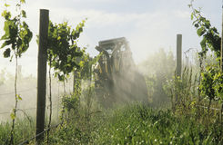 Viñedo de rociadura del tractor con el valle Victoria Australia de Yarra del fungicida. Fotos de archivo libres de regalías