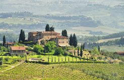 Viñedo de Toscana fotos de archivo
