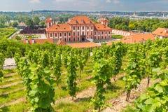 Viñedo del stKlara cerca del castillo francés Troja, Praga, República Checa Fotos de archivo