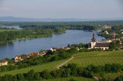 Viñedo en Alemania Imagen de archivo