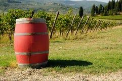 Viñedo en Chianti con los barriles de vino rojo, región de Toscana imágenes de archivo libres de regalías