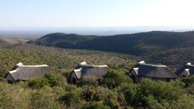 Viñedo famoso de Kanonkop cerca de las montañas pintorescas en el resorte Fotos de archivo