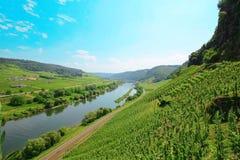 Viñedo, valle en Alemania, Europa Foto de archivo libre de regalías
