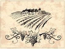 Viñedo y castillo