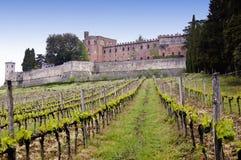Viñedo y castillo Fotografía de archivo libre de regalías