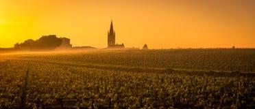 Viñedo y pueblo de Saint Emilion en la salida del sol, panorámicos, Francia Fotografía de archivo