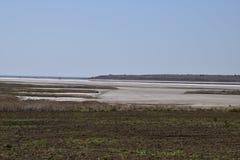 Viñedos cerca del lago de sal Paisaje de la plantación de la uva Imagenes de archivo