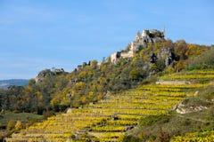 Viñedos coloreados cerca de Duernstein en otoño imagen de archivo