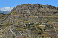 Viñedos de la montaña Fotografía de archivo libre de regalías