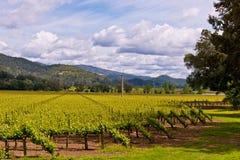 Viñedos de Napa Valley, primavera, montañas, cielo, nubes Imagen de archivo