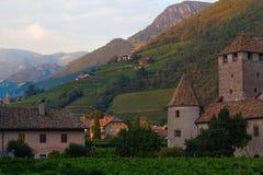 Viñedos en Bolzano, Italia Fotografía de archivo libre de regalías