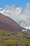 Viñedos en las montañas Fotos de archivo