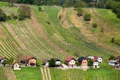 Viñedos en Lendavske Gorice en Eslovenia, pequeñas casas imagen de archivo libre de regalías