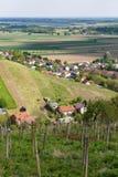 Viñedos en Lendavske Gorice en Eslovenia fotos de archivo libres de regalías