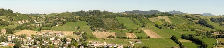 Viñedos italianos Imagen de archivo