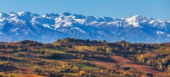 Viñedos otoñales y montañas nevosas en Italia Fotografía de archivo
