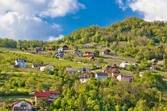 Viñedos y cabañas de las colinas de Zagorje Imagen de archivo libre de regalías