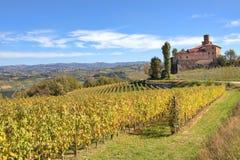 Viñedos y castillo viejo. Piedmont, Italia. Fotografía de archivo