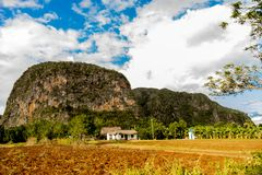 Viñales valley view in Cuba. Unreal nature with lakes, mountain, trees, wildlife. Gorgeus sky. Vi ales valley view in Cuba. Unreal nature wih lakes, mountain Royalty Free Stock Photography