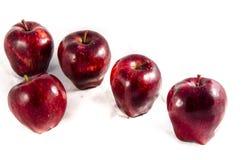 Vi har här söt ny stor röd ` s för äpple fem Royaltyfri Fotografi