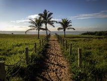Via alla spiaggia Fotografia Stock