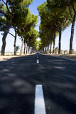 The via appia. The ancient via appia one hour south of rome Royalty Free Stock Images