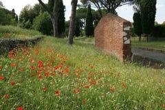 Via Appia antica. The ancient road via Appia antica in the spring Stock Photos