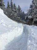 Via attraverso neve che attende clearning immagini stock libere da diritti