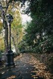 Via in autunno immagini stock