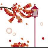 Via in autunno Immagini Stock Libere da Diritti