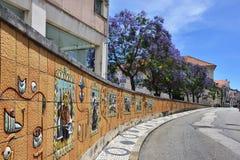 Via a Aveiro, Portogallo Fotografie Stock Libere da Diritti