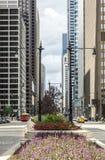 Via in Chicago, Illinois, U.S.A. Fotografie Stock Libere da Diritti