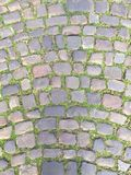Via Cobbled Immagine Stock