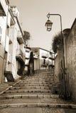 Via con il passaggio pedonale a Cannes Fotografie Stock