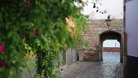 Via con una nova di Porta dell'arco in vecchia città Faro Portogallo archivi video