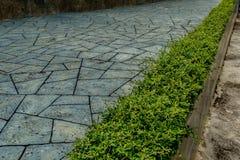 Via concreta in giardino Fotografia Stock