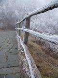 Via congelata Fotografia Stock