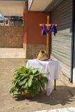 Via Crucis Celebration Stock Photos