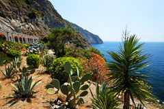 Via del Amore on the Ligurian coast Royalty Free Stock Photo