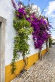 Via del fiore, Obidos, Portogallo Fotografia Stock Libera da Diritti