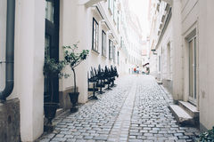 Via della città, pareti bianche ed architettura, alberi in vasi da fiori Fotografia Stock