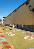 Via di La laguna con i tappeti del fiore Fotografia Stock