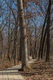 Via di legno Immagini Stock