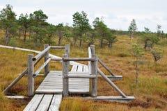 Via di legno attraverso la palude fotografie stock libere da diritti