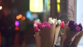 Via di notte del fiore della primavera stock footage