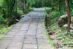 Via di pietra che passa attraverso la cascata Fotografie Stock Libere da Diritti